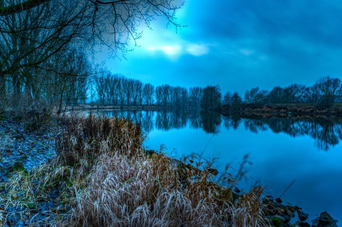 Serenity and tranquility lies over the river Weser in the vicinity of the small town of Nienburg shot in December 2016. Blue Hour Nienburg/Weser River Weser Bare Tree Beauty In Nature Cloud - Sky Day Forest Lake Nature No People Outdoors Reflection Scenics Serenity And Tranquility Sky Tranquil Scene Tranquility Tree Water