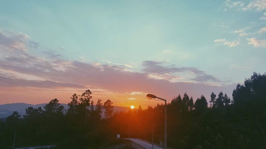 Sunset Sky No People Tree Nature Outdoors Beauty In Nature Scenics Night First Eyeem Photo