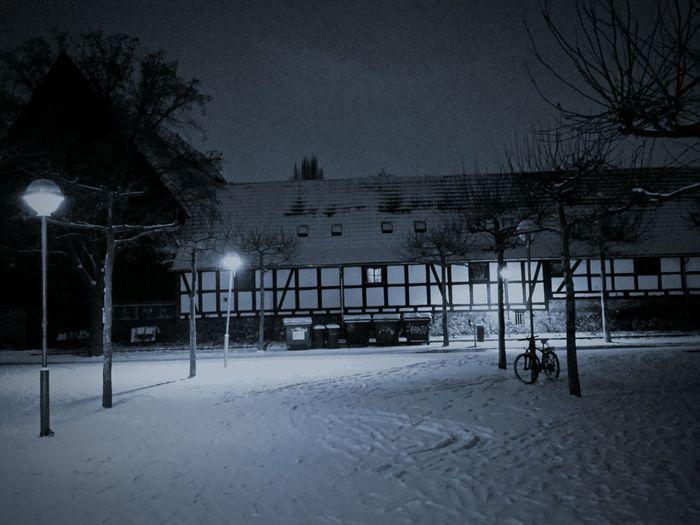 Snow Illuminated Tree No People Sky Outdoors Nature Night