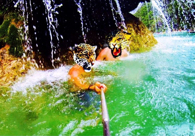 Under a waterfall ... It becomes lions ... With My Gopro