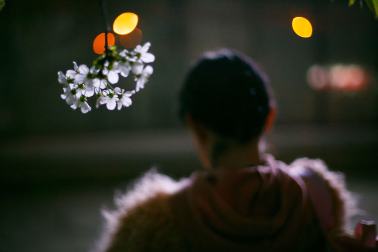 Rear view of woman on flowering plant at night