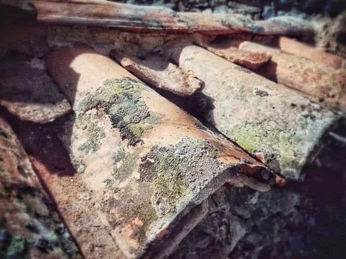 High Angle View No People Day Shadow Sunlight Indoors  Close-up Shades Of Winter Rough Selective Focus Textured  Rusty Outdoors Nature