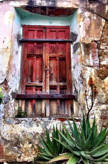 Come to my window and let's make history. Window Old Rustic History