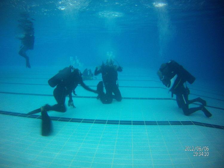 متعه لا توصف Al00o Blue Coursework Dive In Diving Enjoyment Fun Openwater Openwatercourse Swimming Swimming Pool