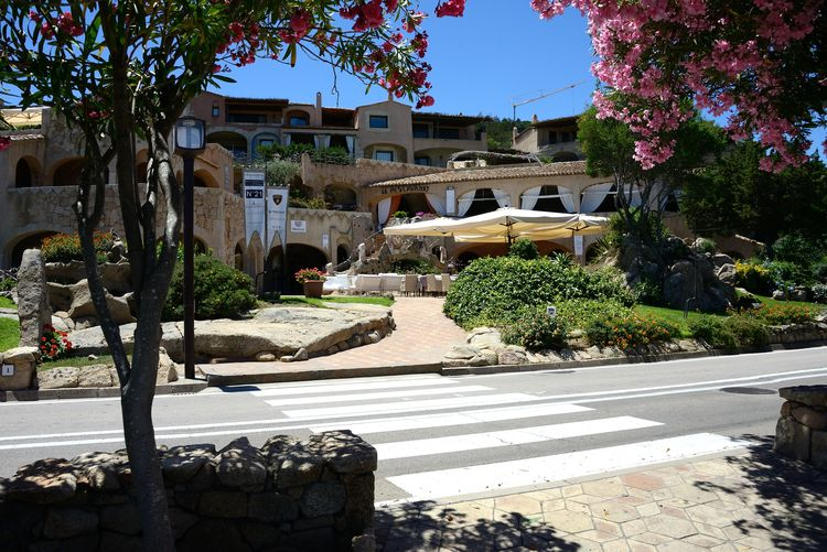 Porto Cervo Oleander Flowers Porto Cervo, Sardinia Architecture Building Exterior Built Structure Day Hotel Nature No People Outdoors Plant Residential Building Restaurant Summer Sunlight Travel Destinations Tree Urban Landscape