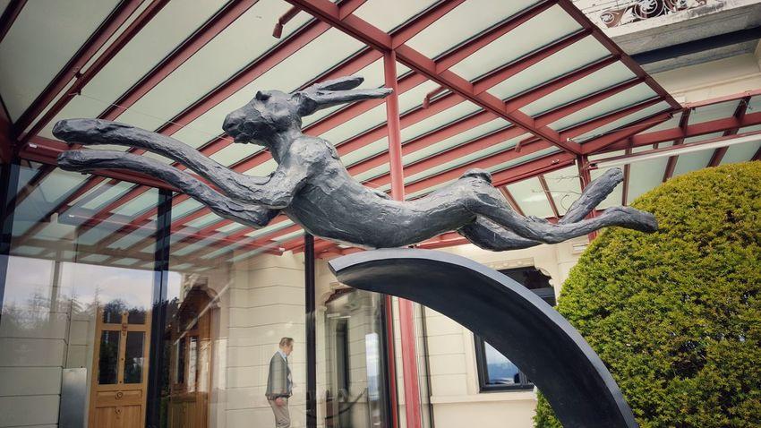 Rabbit 🐇 Sculpture Art ArtWork Artsculpture Bunny 🐰 Bunny Rabbit
