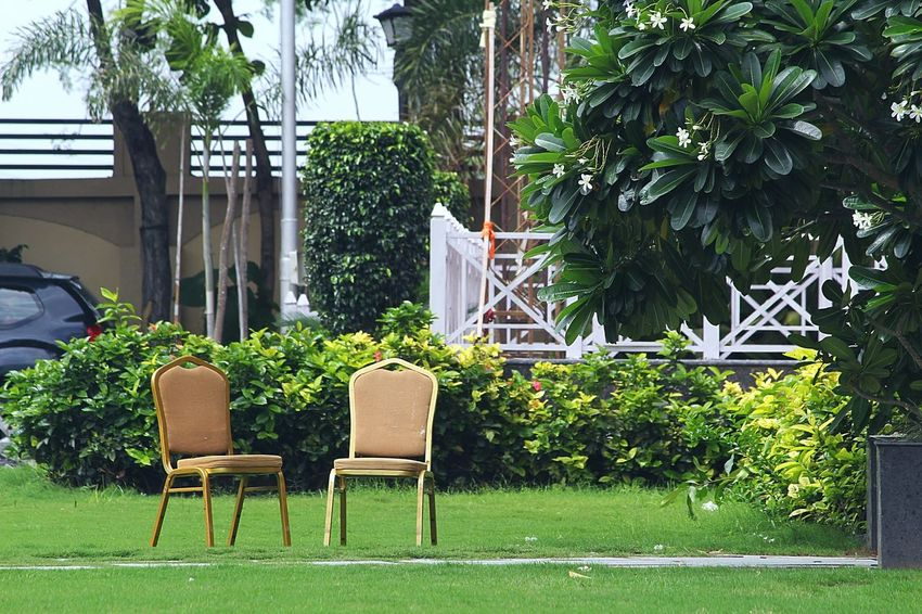 Outdoor Chair No People Tree Front Or Back Yard Chair Outdoors Day Table Grass Plant Growth Nature Canon Camera Canon_photos Multi Colored Canonphotography