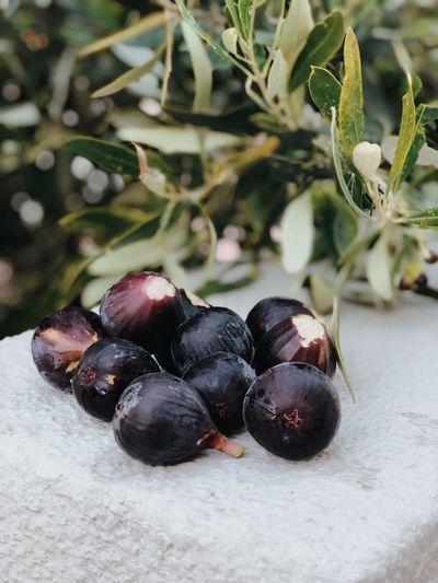 Fresh figs Food