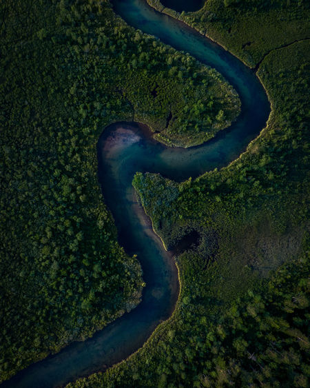 Aerial view of river amidst field