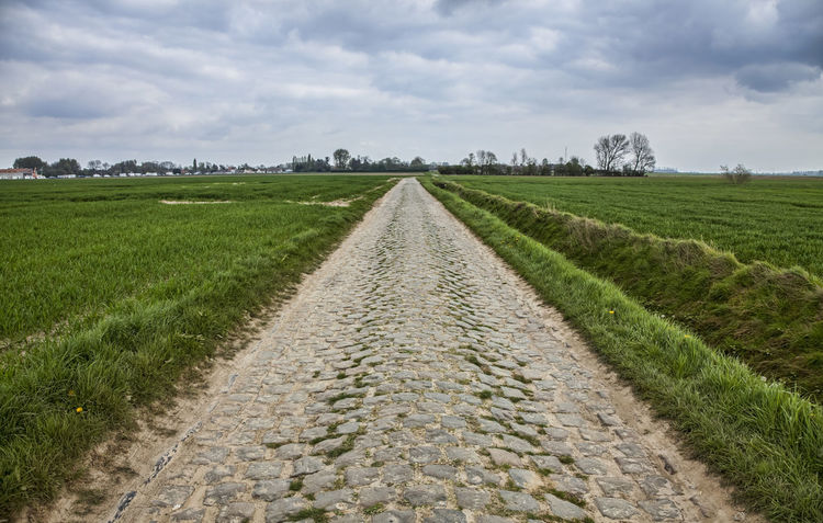 Cobbelstone road Perspective Road Agriculture Cloud - Sky Cobblestone Alley Directions Field Green Color Horizon Over Land Horizontal Symmetry Landscape Nature Paved Path Rural Scene Scenics The Way Forward Tranquil Scene