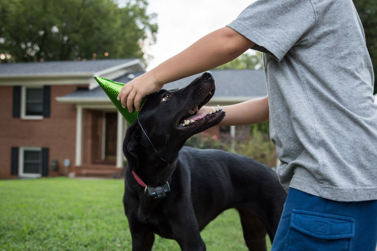 Midsection of boy wearing party hat to dog at yard