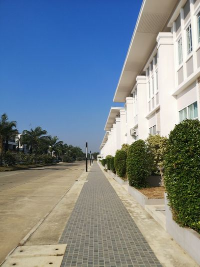 Footpath amidst trees and buildings against blue sky