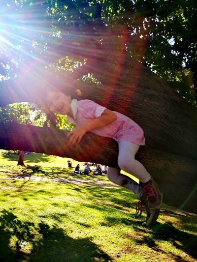 Happiness is watching her grow! Sunlight ☀ Climbing Trees Childhood Moments Flares In Nature