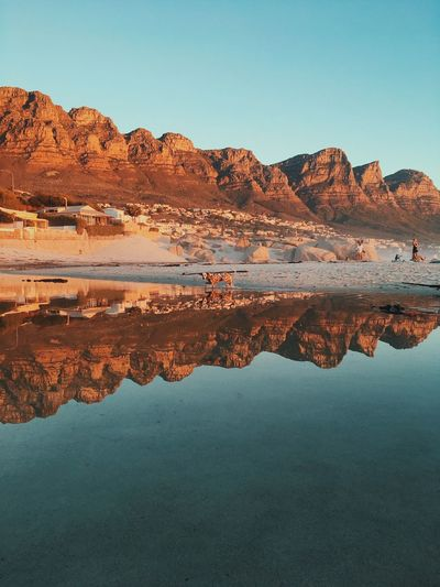 Dog walking through a beach puddle, Cape Town. Animal Arid Climate Beauty In Nature Clear Sky Day Desert Dog Lake Landscape Mountain Mountain Range Nature No People Outdoors Physical Geography Reflection Scenics Sky Tranquil Scene Tranquility Travel Destinations View Into Land Water Waterfront
