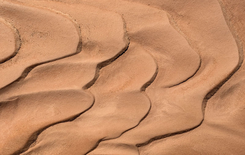 Pattern in the sand in Goblin Valley, Utah. Abstract Arid Climate Desert Beauty Goblin Valley State Park, Utah High Angle View Natural Pattern Outdoors Pattern Sand Sand Pattern Southern Utah  Textured