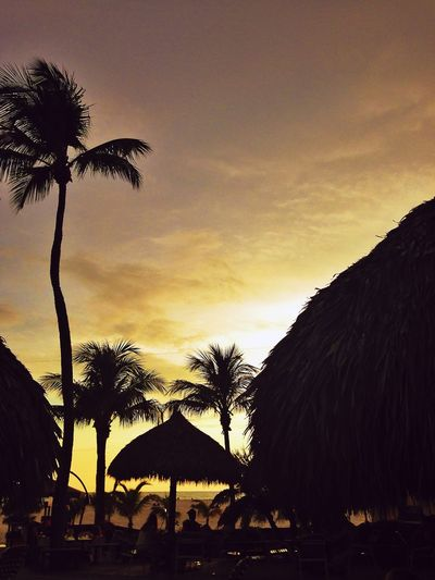 Sunset Silhouettes Palm Trees Summer Beach Huts Beachphotography Florida Fort Myers United States