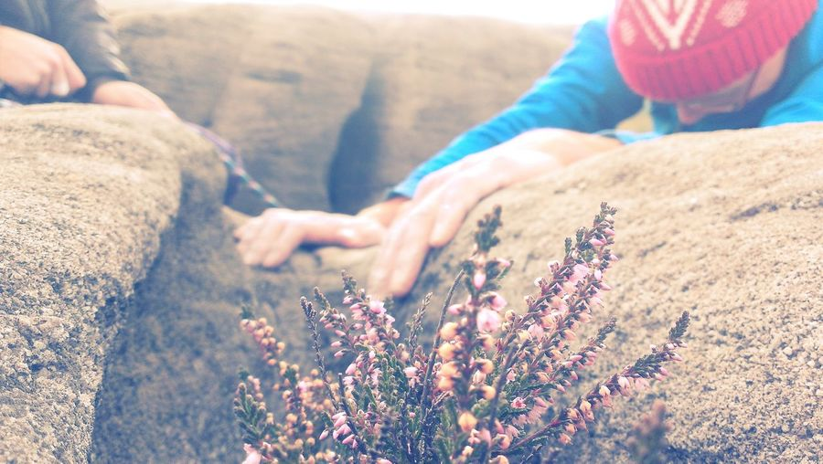 Cropped image of friends climbing on mossy rocks