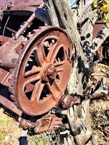 """Busted Gear"" Broken main gear on an abandoned piece of farm machinery remaining from the glory days when Cedarvale, NM, USA was the largest pinto bean producing area in America during the 1920's. Farm Machinery Farmequipment PintoBeans Abandoned Places Abandoned Farm Rural Rural Scenes Rural America RuralTreasures  Rural Decay Ruralphotography Rural Exploration Farmland Farming Gears"