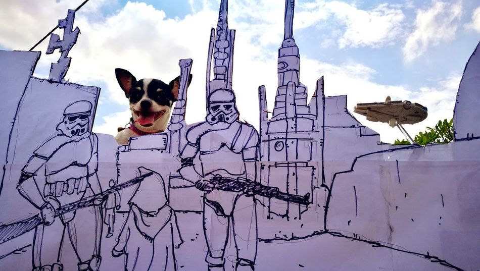 Photo bomb BYOPaper! Photo Bomb Star Wars A New Hope Sandtrooper Dog One Animal Pets Animal Animal Themes Cloud - Sky Mammal Domestic Animals EyeEmNewHere EyeEm Eyeemphotography EyeEm Best Shots EyeEmBestPics EyeEm Gallery Colour Photography Colour Photo Humor Pet Portraits