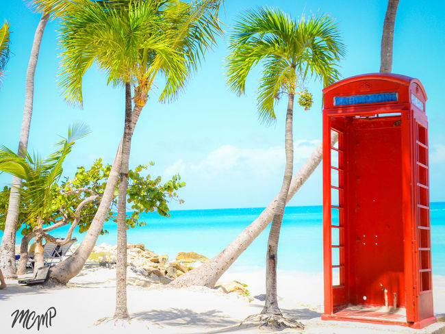 Antigua And Barbuda Beach Beach Photography Blue Caribbean Sea Day Eye4photograghy EyeEm Nature Lover Horizon Over Water Mare ❤ Nature Nature Photography No People Ocean View Outdoors Palm Tree Palm Tree Protection Sea Sky Sunlight Telephone Box Travel Destinations Tree Water
