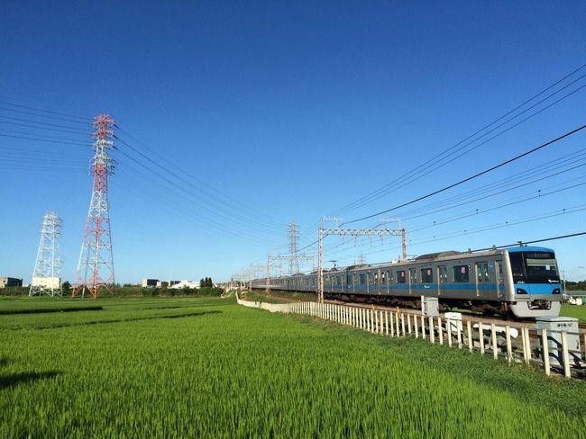 小田急 電車 Train