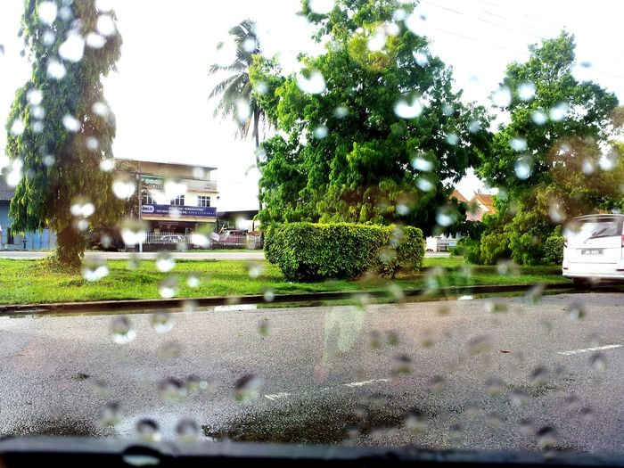 Crystal Clear After Rain From The Car Window OpenEdit Eye4photography  Hugging A Tree