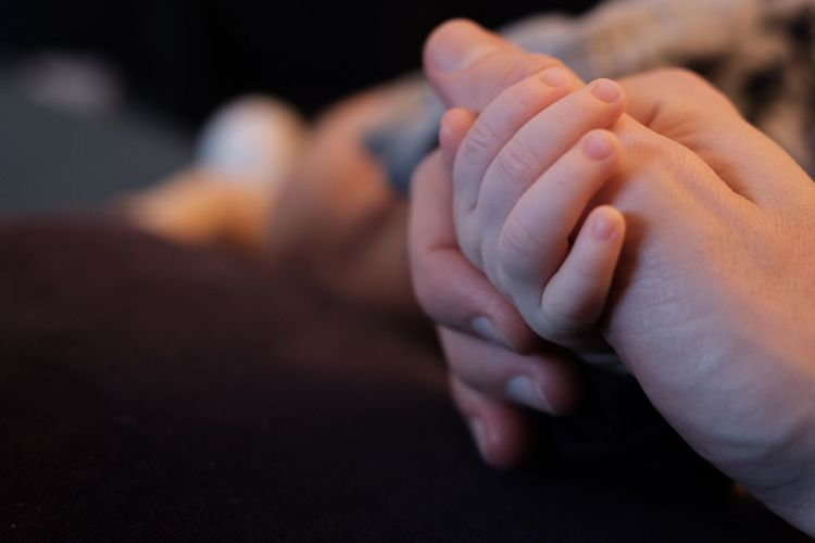 Holding hands Copy Space Human Body Part Hand Togetherness Human Hand Positive Emotion Love This Is Queer Family With One Child Bonding Body Part Focus On Foreground Close-up Family Parent Emotion Men Adult Couple - Relationship Real People People Finger Visual Creativity