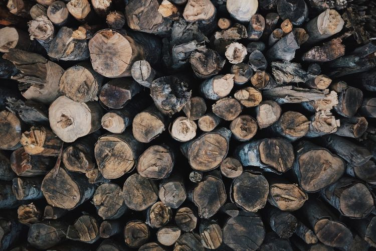 The Earth is all we have in common. Stack Timber Log Lumber Industry Woodpile Deforestation Large Group Of Objects Wood - Material Abundance Heap Backgrounds Pile Fossil Fuel Forestry Industry Full Frame No People Fuel And Power Generation Arrangement Day Nature The Week On EyeEm EyeEmNewHere
