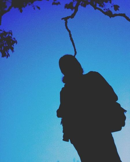 Blrphotowalk Blrphotography Nikon CubbonPark Blue Bluehour Silhouette Seemslikehanging Primeshots Nature Trees Bluesky Evening Nikonphotography Vscocam VSCO 500px Nammabengaluru Explore Igphoto Ig_captures Ig_india Igworldclub Photo_tag