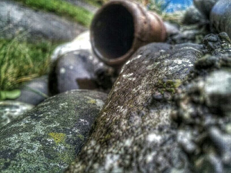 Borth, Wales Stone Pipe Hdr Edit Samsung Galaxy S II  Moss & Lichen Nature_collection