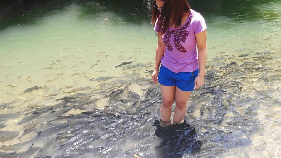 Fish spa. Water Vacations, river, spa, Luanti Ranau Sabah, Short Gateaway With Friends, Outdoors Beauty In Nature Landscape