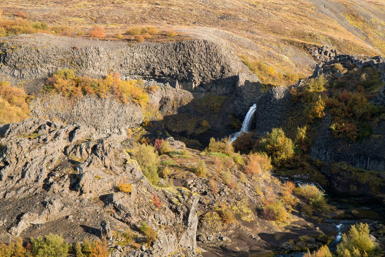 Autumn Rock Nature Scenics - Nature Rock - Object Plant Environment No People Solid Beauty In Nature Day Land Landscape Tree Water Change Tranquil Scene High Angle View Mountain Non-urban Scene Outdoors Waterfalls Iceland