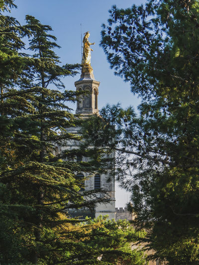 Avignon 0 Gold Maria Shiny Virgin Mary Architecture Art And Craft Building Exterior Built Structure Day Green Color Growth Hidden Beauty History Human Representation Low Angle View Nature No People Outdoors Plant Representation Sculpture Sky Statue Travel Destinations Tree