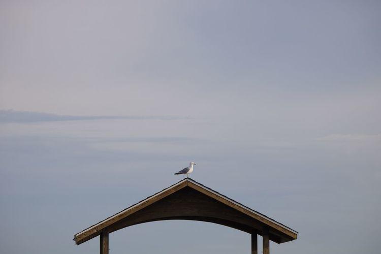 Cross on roof against sky