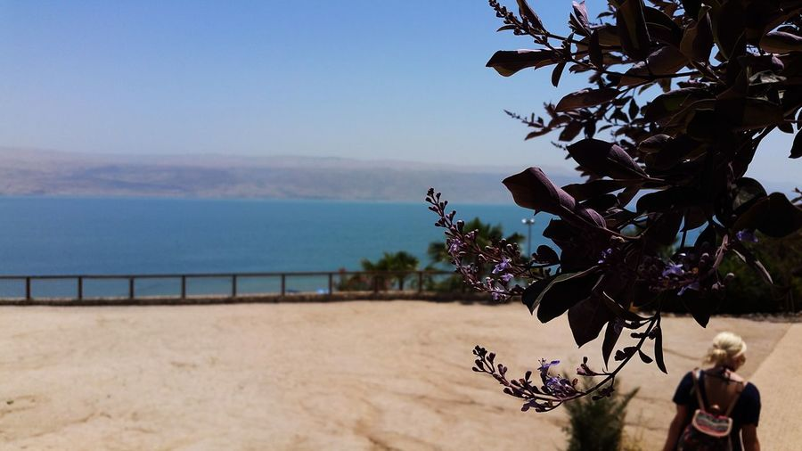 Lowestplaceonearth TheDeadSea Deadsea Israel Mesada Kailabeach Lowestbaronearth Jordan Jewish Borders Backpackers Travel Nature