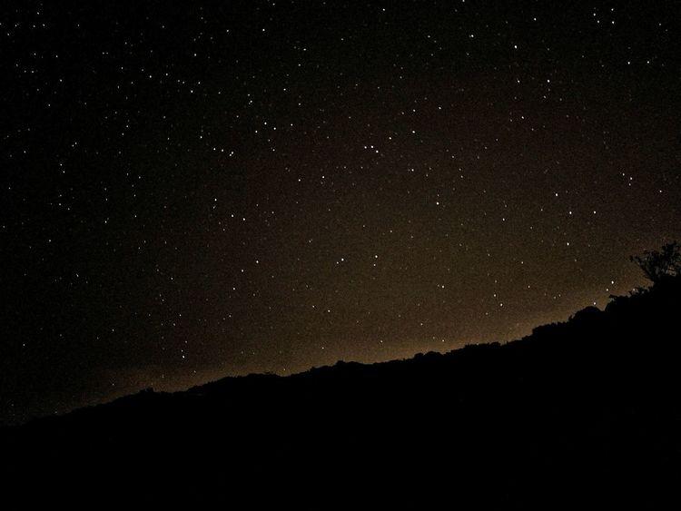 Camping Stary Night