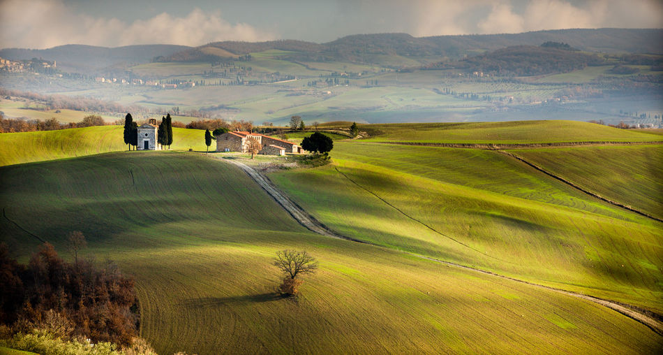 Val d'Orcia, Tuscany, Italy Italia Toscana Tuscany Beauty In Nature Cloud - Sky Day Environment Field Grass Green Color Idyllic Italy Land Landscape Mountain Nature No People Non-urban Scene Outdoors Plant Rolling Landscape Rural Scene Scenics - Nature Siena Sky Tranquil Scene Tranquility Val D'orcia