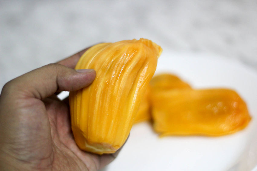 Man holding a jackfruit Close-up Day Food Food And Drink Freshness Healthy Eating Healthy Lifestyle Holding Human Body Part Human Hand Indoors  Jackfruit One Person People Ready-to-eat Real People Vegetable