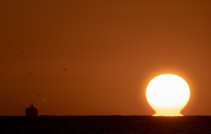 Arising Sunset
