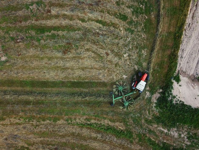 High Angle View Field Grass Green Color Agricultural Field Farmland Crop  Ear Of Wheat Cereal Plant Combine Harvester Cultivated Land Textured  Rye - Grain Rice Paddy Hay Bale Corn - Crop Oat - Crop Barley Drone  Oilseed Rape Plantation Bale  Wheat Stalk Farm