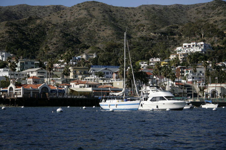 Hanging Out Travel Destinations Traveler California Catalina Island
