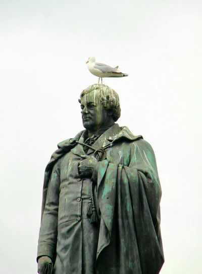 Statue Liberator Ireland Gull Dirty Day Outdoors No People No Real People No Person