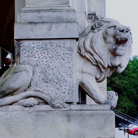 City King - Royal Person Sculpture Statue Lion - Feline History Architecture Close-up Royalty The Architect - 2018 EyeEm Awards