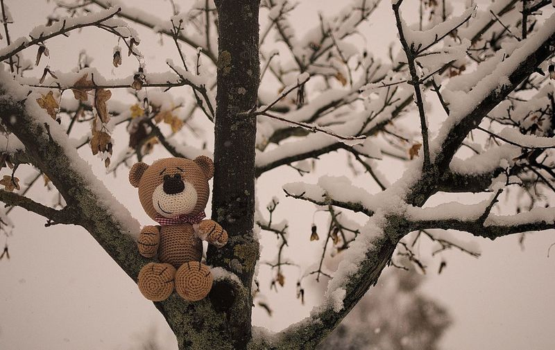 Kamera, Nikon : Nostalgieteddy; www.maloutainment.de ; Niedersachsen, Germany Teddy Spielzeug Niedersachsen Hannover Celle Hamburg Nikonphotography Nikon Amigurumi Stricken Product Photography ProduktFotografie Winter Schnee Snow Full Frame Day Backgrounds Close-up No People Outdoors Built Structure
