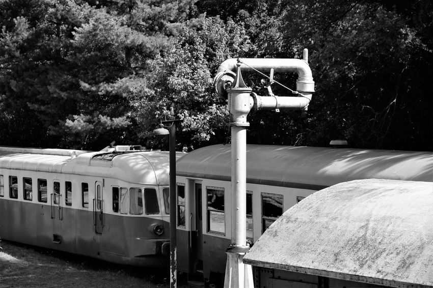 Normandie Normandie, France Old Train Station Black And White No People Old Train Outdoors Transportation Tree