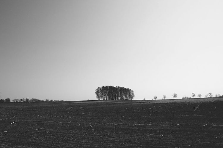 Monochrome monochrome photography Bnw Bnw_collection Blackandwhite Blacl And White Nature_collection Nature Photography Shadow Nature Tree Silhouette Rural Scene Sky Landscape