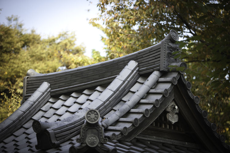 View of asian roof