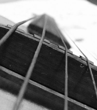 The macro life of a guitar. Check This Out Taking Photos Enjoying Life EyeEm Gallery Black And White Photography Music Lovers EyeEm Best Shots Blackandwhite Strings Attached Macro Macro Photography Learn & Shoot: Simplicity Learn & Shoot: Leading Lines Strings Guitarist Guitar Music Showcase: February Deceptively Simple From My Point Of View Our Best Pics Depth Of Field