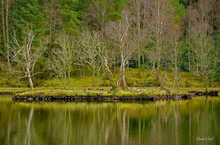 Glencoe Lochan. ISO 100. f/4.8 1/200th Igbest_shots Ig_supershots Loves_Scotland Ig_shots_magic Insta_Scotland Master_shots Special_shots Thebest_captures Splendid_shotz Ig_bliss Britains_talent Nature_shooters Nature_best Ig_shutterbugs Naturelovers Ig_captures Ic_water Global_hotshotz Nikon_photography Nikonphoto Glencoe Glencoelochan Landscape_lovers Landscape_captures Landscapes scotlandlover