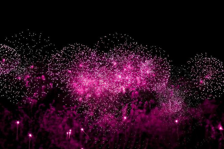 Colors Fireworks Black Background Exploding Firework Firework Display No People Outdoors Pink Color Purple Sky Studio Shot